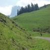 mscwanderung_05062009-18.jpg