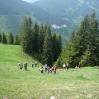 mscwanderung_05062009-41.jpg
