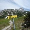 mscwanderung_05062009-73.jpg