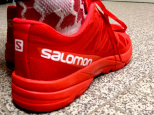 Salomon S-LAB Sonic